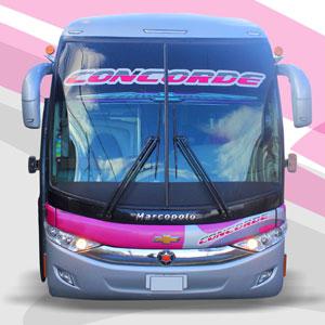 Bus Concorde - Futura