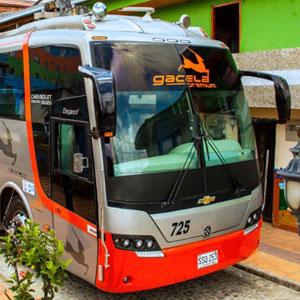 Bus Flota Magdalena - Premiun