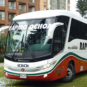 Bus Rápido Ochoa - REY DORADO LO MÁXIMO