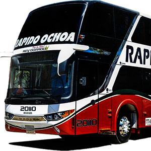 Bus Rápido Ochoa - REY DORADO - [2DO PISO]