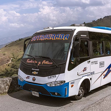 Bus Sotrauraba - Linea Micro